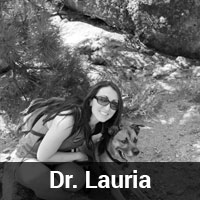 Dr.-Lauria