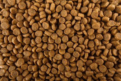 Dried dog food background